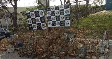 Polícia Civil e GCM localizam animais silvestres em cativeiro
